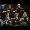 J.S. Bach: Chúa Jesus Là Niềm Vui Của Con – Jesu, meine Freude