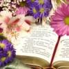 Thánh Ca: Lời Dịu Dàng – Wonderful Words of Life
