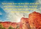 Lời Chúa Mỗi Ngày: Thi Thiên 40:2
