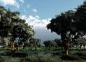 Thánh Ca: Trees of the Field