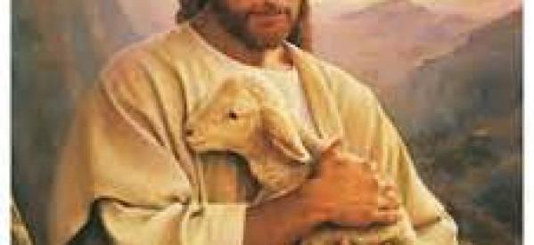 Nhìn Xem Con Đức Chúa Trời