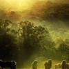 Mục sư Võ Ngọc Thiên Ân: Công Bố Năm Hân Hỉ
