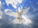 Cầu Xin Đức Thánh Linh Giáng Hạ