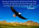 Lời Chúa Mỗi Ngày: Ê-sai 40:31
