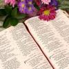 Mục sư Võ Ngọc Thiên Ân:  Gia Đình Được Chúa Yêu