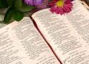 Cùng Học Kinh Thánh: Nê-hê-mi 13:23-31