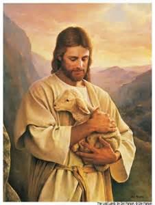 Jesus_sheep_01