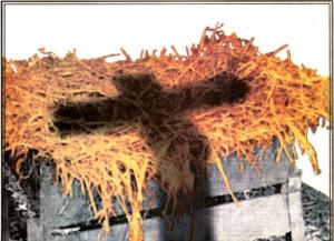 cross-and-manger