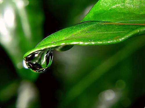 waterdrop_01