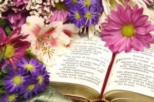 BibleFlowers_04