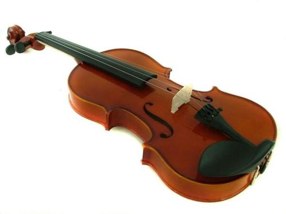 Violin_06