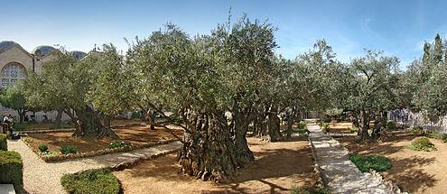 Gethsemane_01