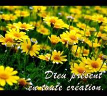 Thánh Ca: Mon Dieu, Tu es grand, Tu es beau!