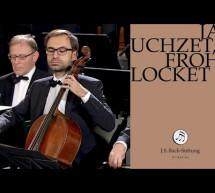 J.S. Bach: Christmas Oratorio – BWV 248