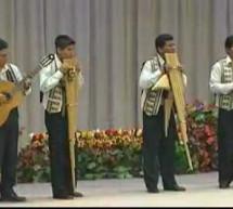Thánh Ca: Tiếng Hát Của Tôi – Hòa Tấu Nhạc Cụ Dân Tộc Bolivia
