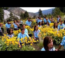 Thánh Ca: Thánh Linh Dẫn Dắt – Holy Spirit Faithful Guide