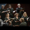 Johann S. Bach: Đức Chúa Jesus Là Niềm Vui Của Con – Jesu, meine Freude