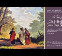 Chúa Nhật 7/6/2020: Hội Thánh Gia Định