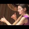 J.S. Bach – Sonata in G Minor – 1st Allegro – Harp