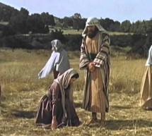 Phim Ngắn: Ru-tơ – Người Phụ Nữ Tin Kính