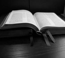 Sống Với Thánh Kinh: 4/6/2013