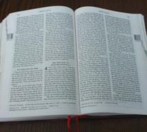 Cho Tôi Chia Xẻ Niềm Tin – Chương 8