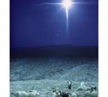 Tiểu Sử Thánh Ca: Hương Nhạc Sao Mơ