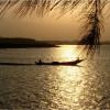 Tùng Sơn: Trăng Biển Giao Duyên