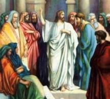 Cùng Học Kinh Thánh – Lu-ca 20:1-8