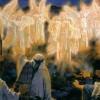 Tường Lưu: Sáng Danh Thiên Chúa