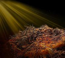 Mục sư Đặng Ngọc Báu: Thái Độ Với Chúa Giáng Sinh