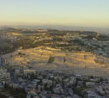 Kiến Thức: Núi Ô-li-ve