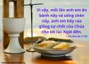 Lời Chúa Mỗi Ngày: I Cô-rinh-tô 11:26