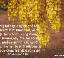 Lời Chúa Mỗi Ngày: I Cô-rinh-tô 15:10