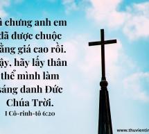 Lời Chúa Mỗi Ngày: I Cô-rinh-tô 6:20