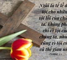 Lời Chúa Mỗi Ngày: I Giăng 2:2