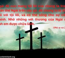 Lời Chúa Mỗi Ngày: I Phi-e-rơ 2:24