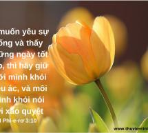 Lời Chúa Mỗi Ngày: I Phi-e-rơ 3:10