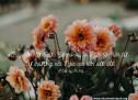 Lời Chúa Mỗi Ngày: I Sử Ký 16:34