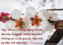 Lời Chúa Mỗi Ngày: II Cô-rinh-tô 5:17