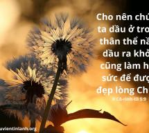 Lời Chúa Mỗi Ngày: II Cô-rinh-tô 5:9
