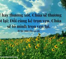 Lời Chúa Mỗi Ngày: II Sa-mu-ên 22:26