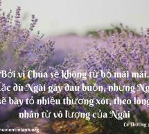 Lời Chúa Mỗi Ngày: Ca Thương 3:31-32
