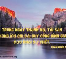 Lời Chúa Mỗi Ngày: Châm Ngôn 11:4
