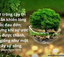 Lời Chúa Mỗi Ngày: Châm Ngôn 13:12