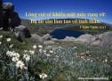 Lời Chúa Mỗi Ngày: Châm Ngôn 15:13