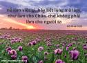 Lời Chúa Mỗi Ngày: Cô-lô-se 3:23