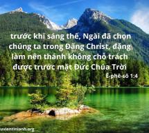 Lời Chúa Mỗi Ngày: Ê-phê-sô 1:4