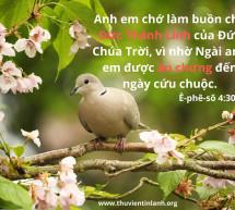 Lời Chúa Mỗi Ngày: Ê-phê-sô 4:30