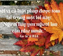 Lời Chúa Mỗi Ngày: Ga-la-ti 5:14